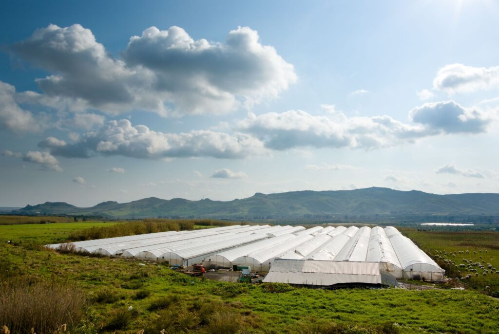 3372103 - rural landscape with cultivation in greenhouse